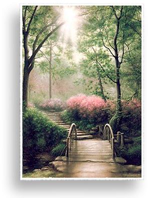 KenJohnston.com > Landscapes > Into the Woods